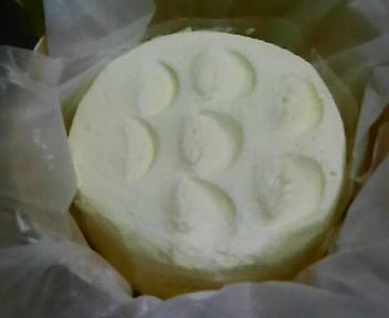 一生懸命チーズケーキ